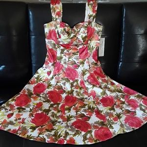 Maggy London floral dress. NWT